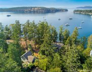 378 Armadale Rd, Friday Harbor image
