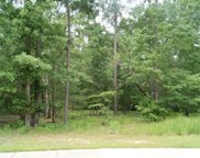 Lot 459 Chamberlin Rd, Myrtle Beach image