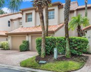 905 Crows Nest Lane, Tampa image