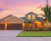 19326 Yellow Clover Drive, Tampa image