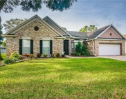15624 Indian Queen Drive, Odessa image