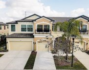 9136 Fox Sparrow Road, Tampa image