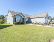 231 Hickory Springs Court, Conway image