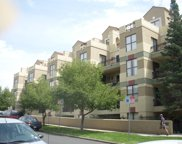 180 Cook Street Unit 406, Denver image