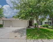 8240 Swann Hollow Drive, Tampa image