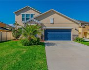 11924 Twilight Darner Place, Riverview image