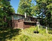 49978 Mackenzie Island Road, Bigfork image