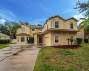 5042 Rishley Run Way, Mount Dora image