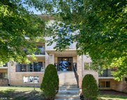 4407 Pershing Avenue Unit 1N, Downers Grove image