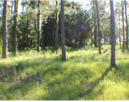 LOT 1 Clearwater Way, Groveland image