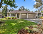 202 Fawn Lily Court, Windsor image