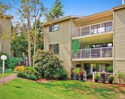 6405 Sand Point Wy NE, Seattle image
