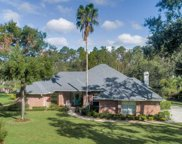 2129 FOREST HOLLOW WAY, St Johns image