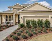 528 Bellflower Way, Clermont image