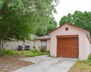 5642 Piney Ridge Drive, Orlando image