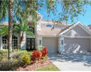 10224 Deercliff Drive, Tampa image