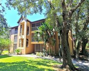 627 Dory Lane Unit 201, Altamonte Springs image
