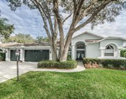 1326 Laurel Green Court, Trinity image