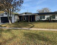 10914 Carrollwood Drive, Tampa image