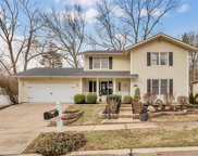 1111 Crested View, St Louis image