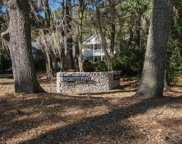 1108 Palmetto  Point, Dataw Island image