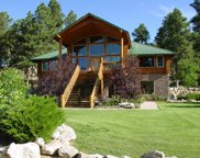 18501 County Road 1, Larkspur image