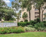 10 S Forest Beach  Drive Unit 421, Hilton Head Island image