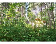Lot 313 N Basswood Drive, Sand Lake image