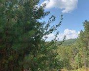 LOT9 Pinehurst, Blairsville image