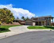 35268 Golden Poppy Court, Winchester image