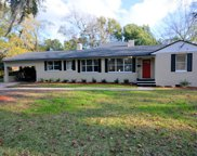 1025 BRIERFIELD DR, Jacksonville image