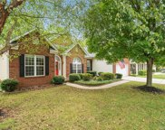 17419  Campbell Hall Court, Charlotte image