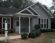 23322 RIVER BIRCH LN, Live Oak image