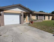 8213 Abbyhill Place, Tampa image