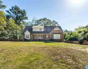 4221 Caldwell Mill Rd, Mountain Brook image