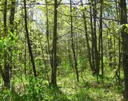 4145 Turfway Trail Unit Lot #597, Harbor Springs image