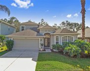 27312 Edenfield Drive, Wesley Chapel image