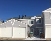 308 Meadow Green Lane Unit 308, Round Lake Beach image