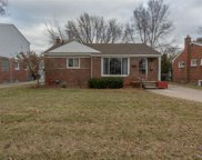28101 S CLEMENTS, Livonia image