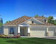 11933 Cinnamon Fern Drive, Riverview image