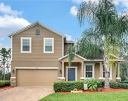 16002 Yelloweyed Dr, Clermont image