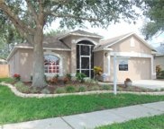 9339 Hidden Water Circle, Riverview image
