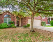 318 Hollow Grove, San Antonio image