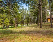 3925 S Clubhouse Circle Unit 309, Flagstaff image