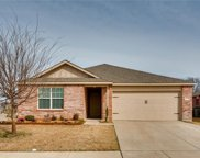 1629 Megan Creek Drive, Little Elm image