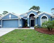 2433 Walnut Heights Road, Apopka image