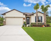 17469 Butterfly Pea Court, Clermont image