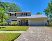 15301 Lazy Lake Place, Tampa image