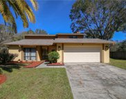 15807 Wheatfield Place, Tampa image