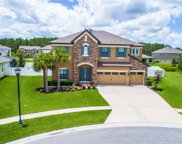 19334 Ranchview Court, Land O Lakes image